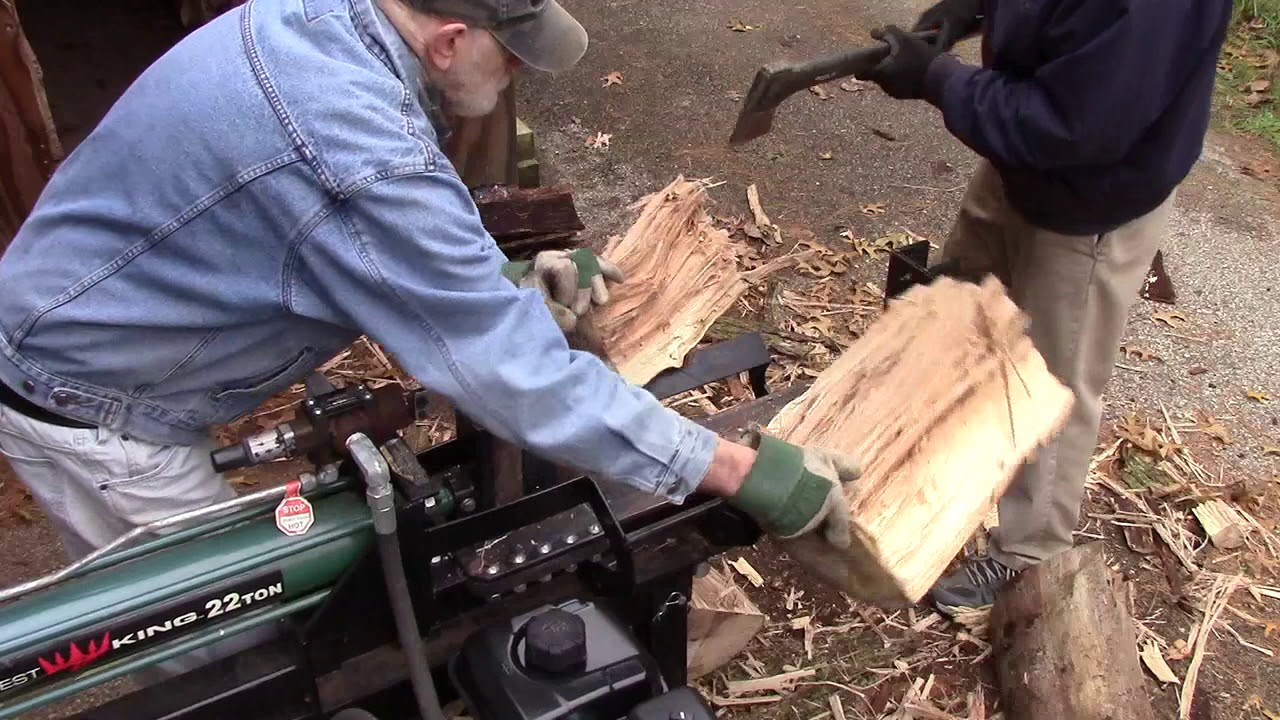 Splitting A Big Elm Tree Log Youtube