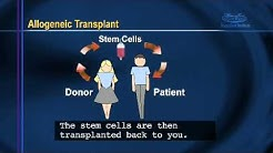 hqdefault - Bone Marrow And Kidney Transplant