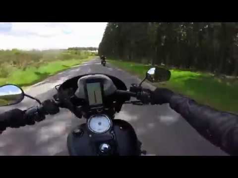 Treis-Garden, Germany 2017 - Harley Davidson Fat Bob