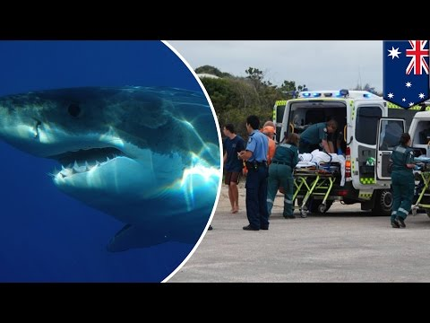Shark attack: Teenage surfer dies after mauled by shark in Australia - TomoNews