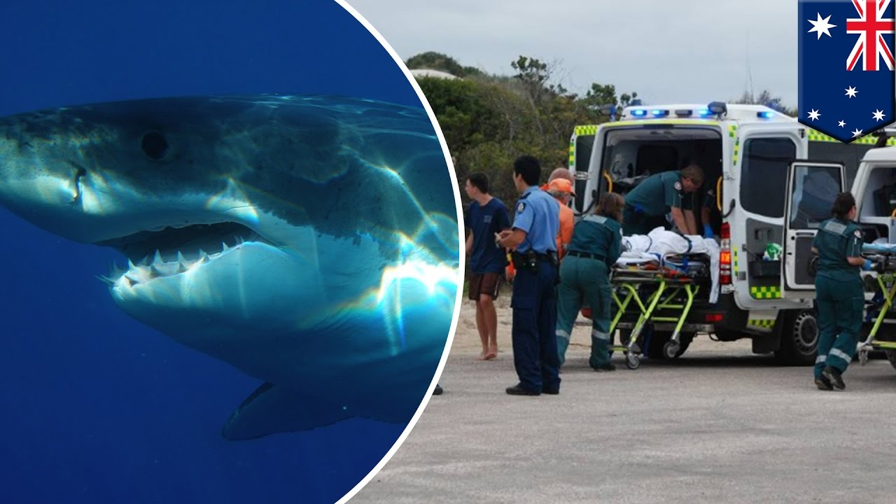 Shark Attack: Teenage Surfer Dies After Mauled By Shark In