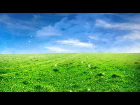 Natural Beautiful, Natureza, Field, Campo, Sky, Céu, Video Background, Video de Fundo HD   YouTube