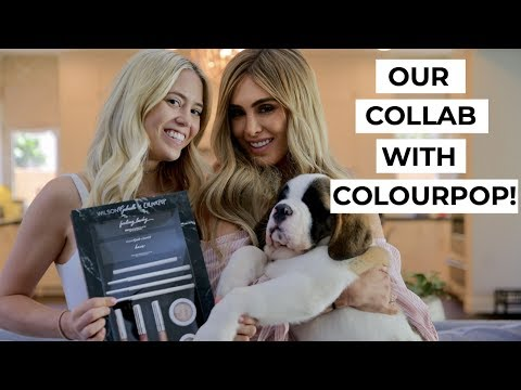 Our Collaboration with ColourPop! | WilsonGabrielle x Palms