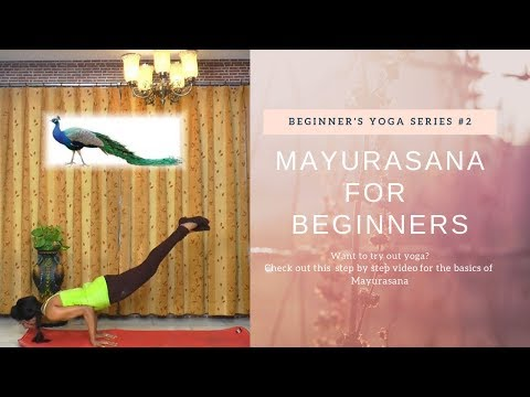 Mayurasana for Beginners,Method & Benefits of Peacock Pose,Detoxify Body,Arm Balance Advanced Yoga
