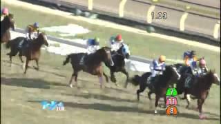 ダイヤモンドステークス 2014 第64回 ダイヤモンドステークス 2014年2月...