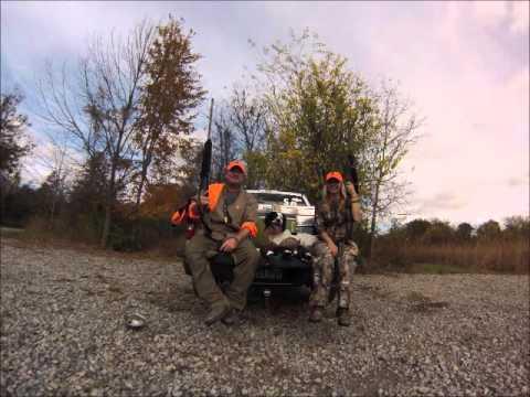 Springer Spaniel 'Tucker' hunting Pheasant and Quail
