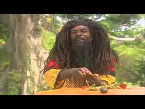 Jamaican Rasta Demonstrates Traditional Rolling of Ganja
