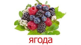 Карточки Домана часть 1 - Ягоды, картинки ягоды для детей с названием