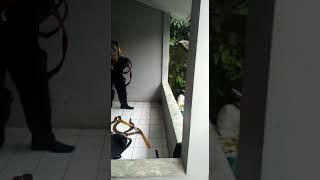 TAWURAN SUDAH, TERCYDUK ANAK STM DI BOGOR INDONESIA