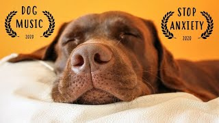 ULTIMATE Dog Music to Sleep ~ Relaxing Music For Dogs ~ Music That Relaxes Dogs (TESTED)