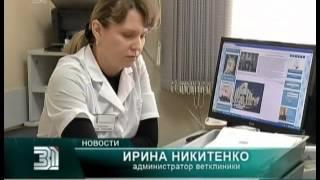 В Челябинске появилась скорая ветеринарная помощь(, 2014-09-26T12:05:48.000Z)