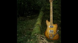 Handmade electric guitar: from tree trunk to live instrument