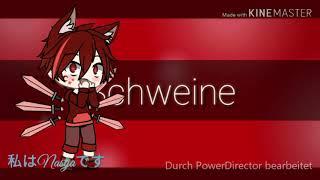 Schweine meme (mistakes in the background)