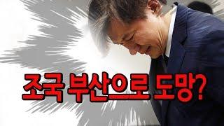 조국, 부산으로 도망? (진성호의 돌저격) / 신의한수