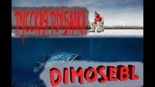Диалоги о рыбалке в игре 🐟Русская Рыбалка 4🐟 - Клюет епти!!!:)
