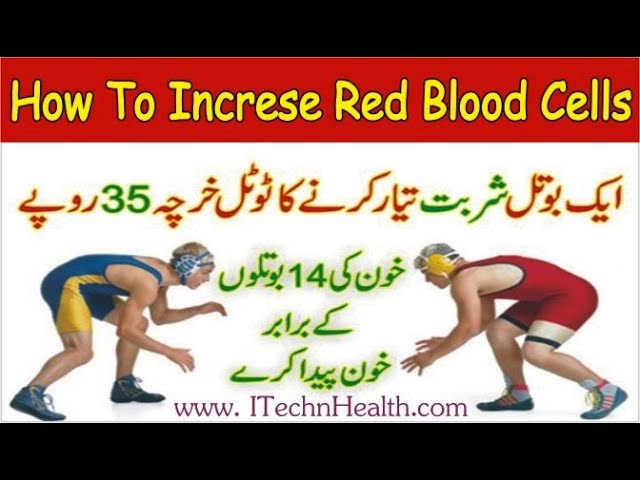 How to Increase Red Blood Cells