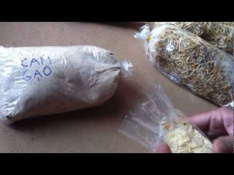 Fishing - How to make Grass Carp Chum Bait(2) - Mồi câu Trắm Cỏ câu chạm