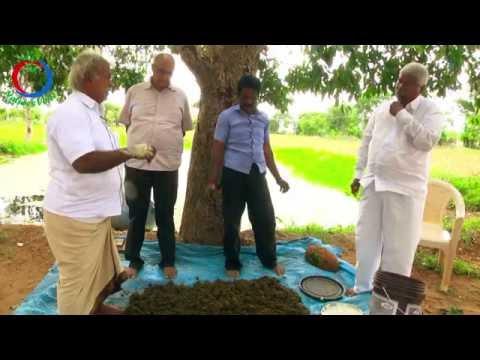 Natural Farming | Preparation of Ghana Jeevamrutham | Subhash Palekar