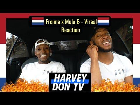 Frenna x Mula B - Viraal  Reaction #HarveyDonTV @Raymanbeats