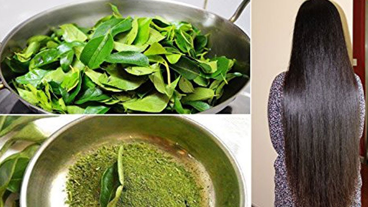 Try Curry leaves for Beautiful Hair