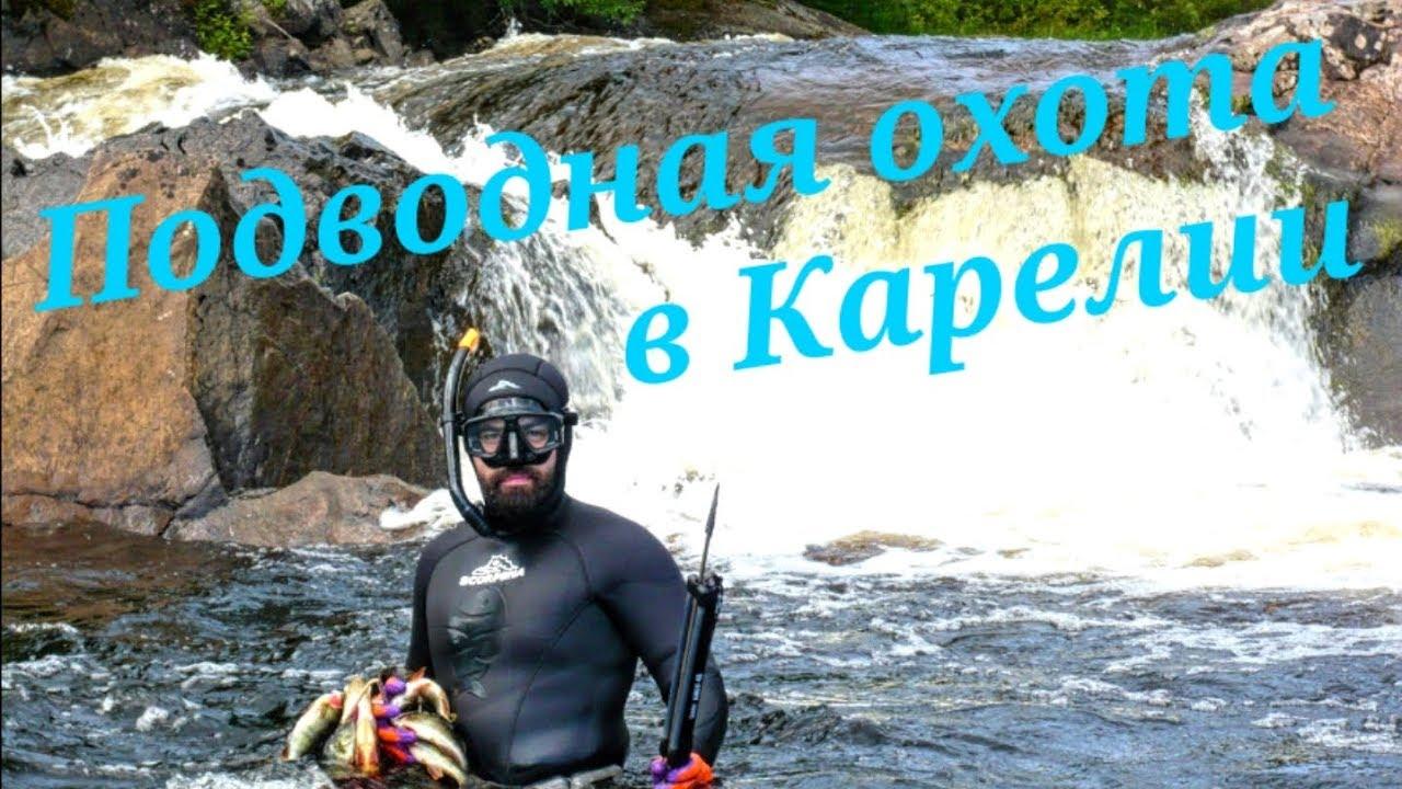 карелия фото подводная охота поедем