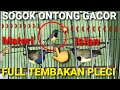 Sogok Ontong Gacor Full Isian Tembakan Pleci  Mp3 - Mp4 Download
