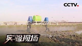 《实验现场》 20200621 喷药实验| CCTV科教