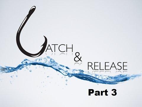 Catch & Release - Go Where the Fish Are
