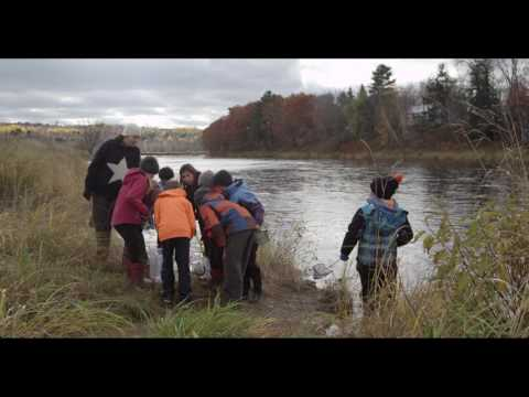 Upstream/Downstream: Education and The Nashwaak Watershed Association