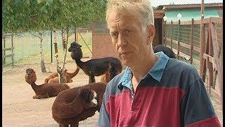 Разведение экзотических животных из Южной Америки в Дмитрове