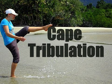 Cape Tribulation Queensland - Top Australia Travel Spots