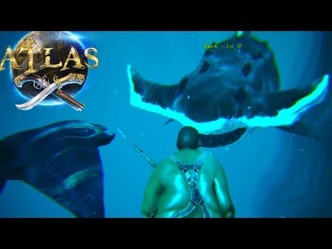 Atlas - HUNTING GIANT HAMMER HEAD SHARK! ALPHA CREATURES! - Atlas Gameplay