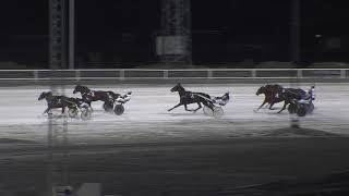 Vidéo de la course PMU PRIX UNG I NORR - FYRARINGSLOPP - FORDEL STON