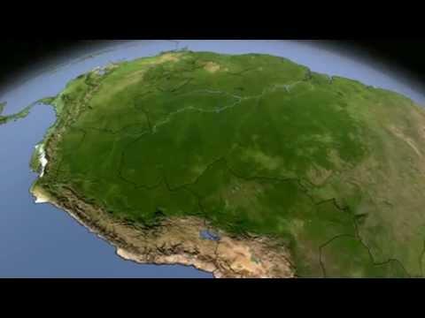 Международная модель вырубки тропических лесов.mp4