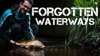 Fishing Tiny Streams | Jack Griffiths | BIG SURPRISE CATCH!