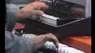Play The Piano Bird