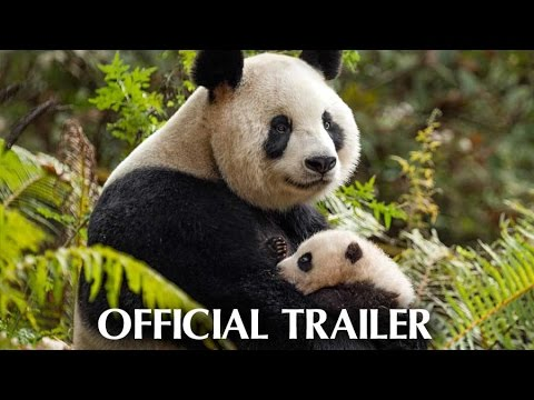 Disneynature's Born In China - Earth Day Trailer