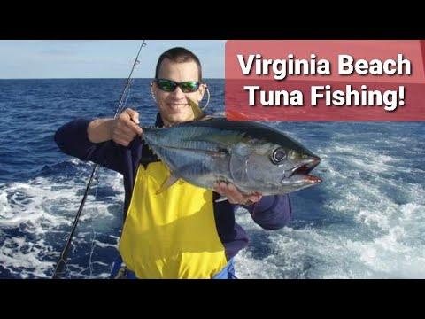 Tuna Fishing In Virginia Beach