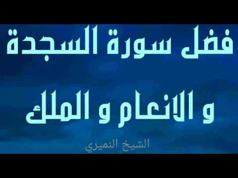 فضل سورة السجدة و الانعام و الملك سؤال وجواب الشيخ النميري Youtube