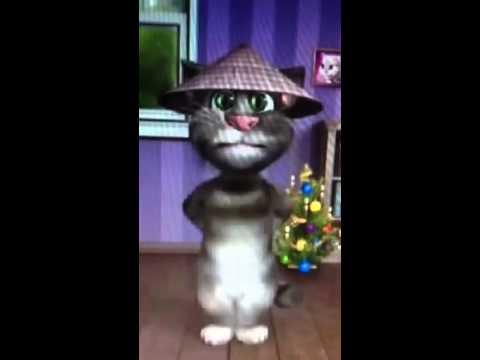 Talking Tom Cat- mèo nhái giọng cực đỉnh