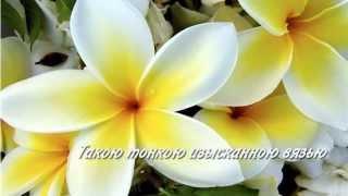 Все цветы для тебя(http://milakalinina.ru/ Видео