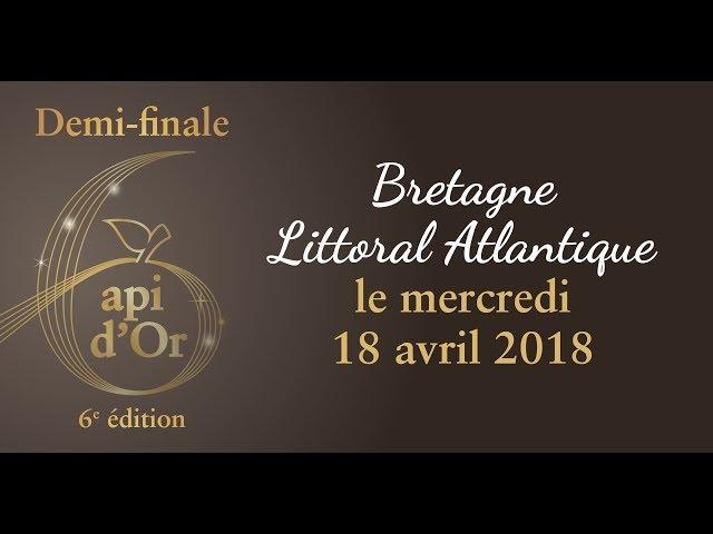 02 - Demi-finale Api d'Or Vannes - 6 édition