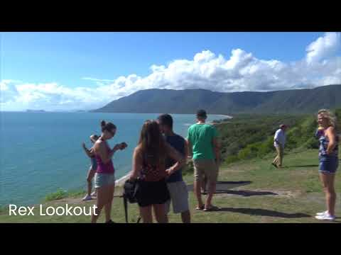 1 Day Cape Tribulation and Daintree Tour with Port Douglas