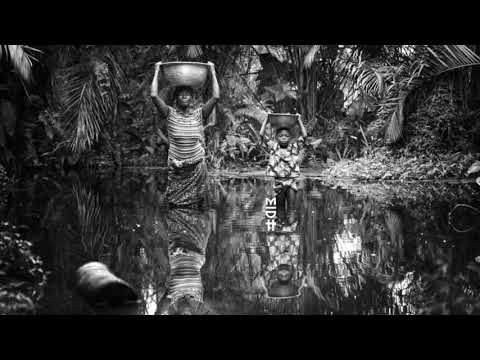 Alsarah & The Nubatones - Fulani (Pablo Fierro Remix)