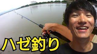 浜名湖でハゼ釣って食べる。そーいえばこの道具で色んな魚釣ってるな