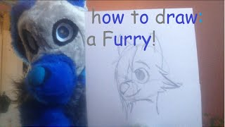 how to draw: a furry