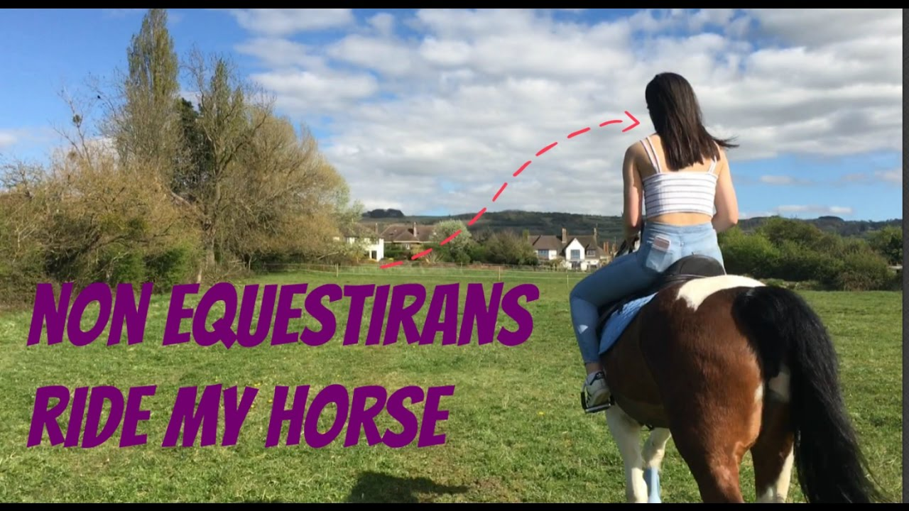Non Equestrians Ride My Horse ! // VLOG