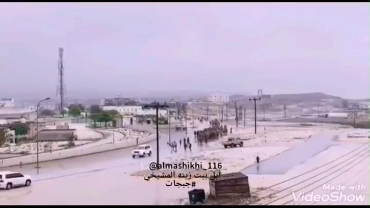 Photo of ابل بيت زينة المشيخي خيالة البيضاء بني أمية – ايفون
