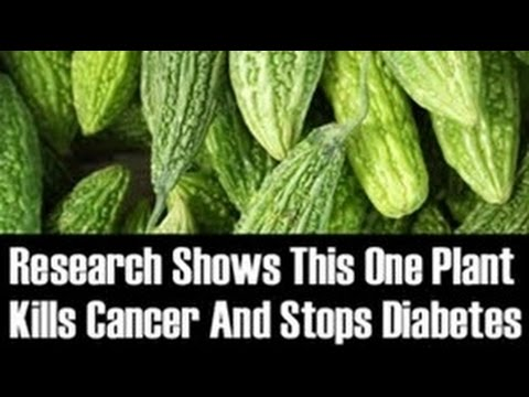 Bitter Melons - Fights Cancer,  Manages Diabetes, Boosts Immune System & Improves Skin Conditions