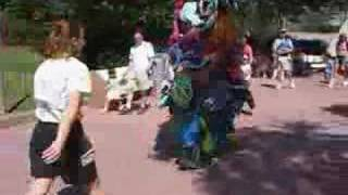 the weirdest costumed characters in disney world